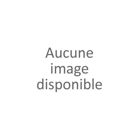 Classic Fondue - en